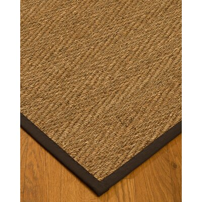 Chavarria Border Hand-Woven Beige/Fudge Area Rug Rug Size: Rectangle 5 x 8, Rug Pad Included: Yes