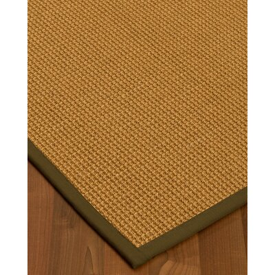 Aula Border Hand-Woven Brown Area Rug Rug Size: Rectangle 4 x 6, Rug Pad Included: Yes