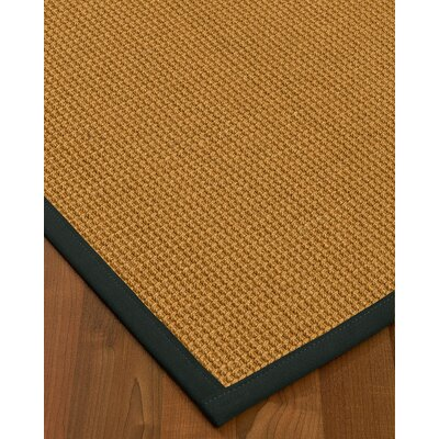Aula Border Hand-Woven Brown/Onyx Area Rug Rug Size: Rectangle 9 x 12, Rug Pad Included: Yes