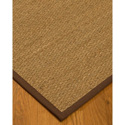 Anya Border Hand-Woven Beige/Brown Area Rug Rug Size: Rectangle 5 x 8, Rug Pad Included: Yes