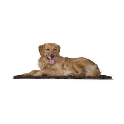 Paws Towel and Shammy Pet Mat Color: Mud, Size: Large (36 W x 1 D x 26 H)