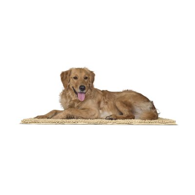 Paws Towel and Shammy Pet Mat Color: Sand, Size: Large (36 W x 1 D x 26 H)