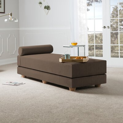 Choy Daybed with Mattress Color: Coffee