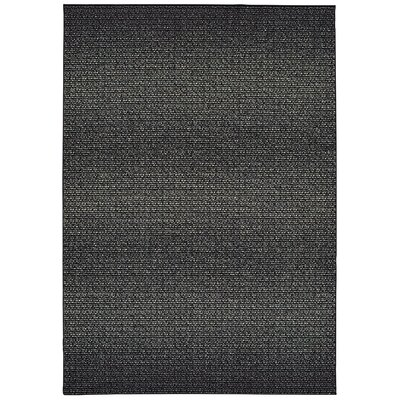 Hedden Mist Black Area Rug Rug Size: Rectangle 53 x 76