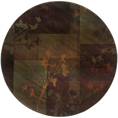 Hinson Purple/Green Area Rug Rug Size: Round 6
