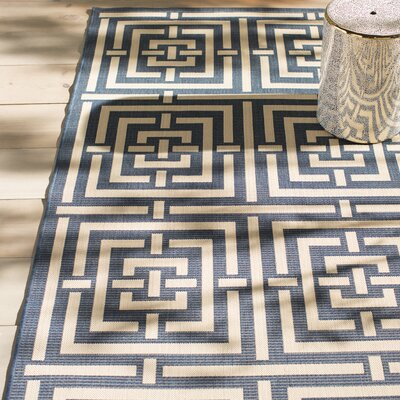 Mayer Navy/Beige Outdoor Rug Rug Size: Rectangle 67 x 96