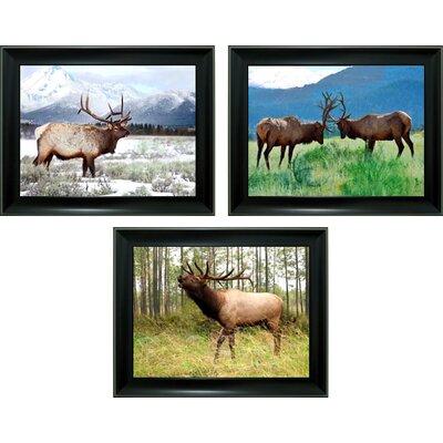 'Elk' Framed Graphic Art Print 2D29B3839CC64521A99FECBB47A0317A