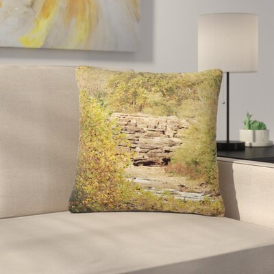 Sylvia Coomes In the Woods 4 Nature Outdoor Throw Pillow Size: 16 H x 16 W x 5 D