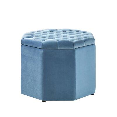 Protagoras Upholstered Ottoman Upholstery: Light Blue Velvet