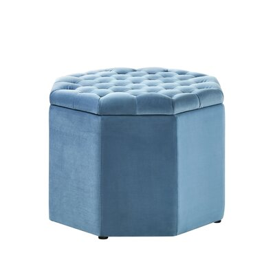 Protagoras Storage Ottoman Upholstery: Light Blue Velvet, Size: Medium