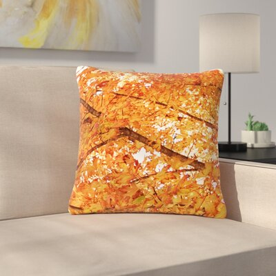 Sylvia Coomes Fall Folioge Outdoor Throw Pillow Size: 18