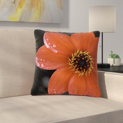 Nick Nareshni Wet Flower Petals Outdoor Throw Pillow Size: 16 H x 16 W x 5 D