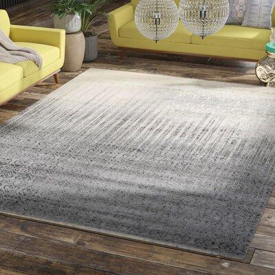 Deniece Gray Area Rug Rug Size: Rectangle 9 x 12