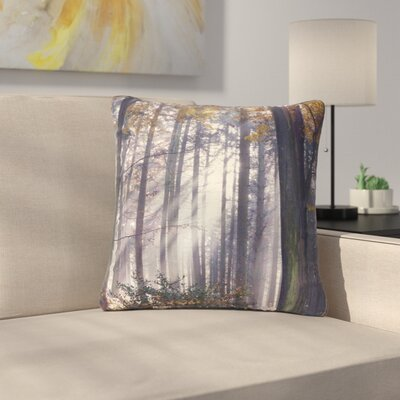 Alison Coxon Autumn Sunbeams Trees Photography Outdoor Throw Pillow Size: 18 H x 18 W x 5 D