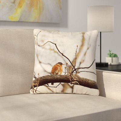 Angie Turner Spring Robin Outdoor Throw Pillow Size: 16 H x 16 W x 5 D