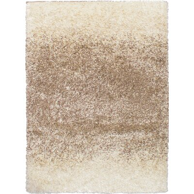 Brown/Cream Area Rug