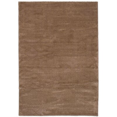 Passmore Brown Area Rug