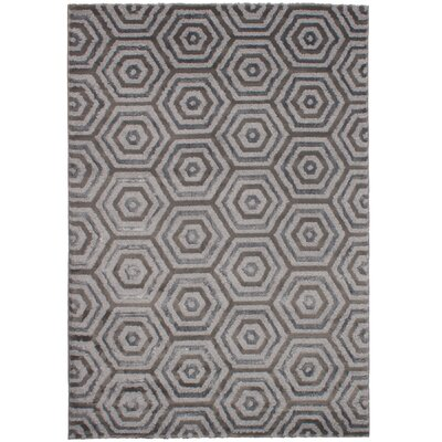 Clack Gray Area Rug