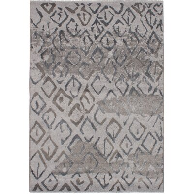 Chesterton Soho Shag Gray Area Rug