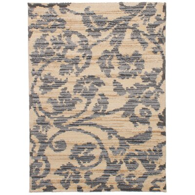 Beige/Dark Gray Area Rug