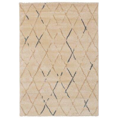 Craver Beige Area Rug Size: 310 x 57