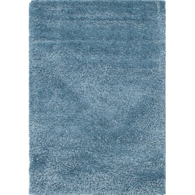Sky Blue Area Rug Rug Size: Rectangle 44 x 6