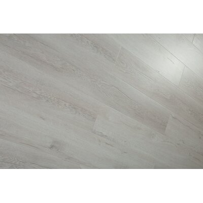 Forest Park 7 x 49 x 12mm Laminate Flooring in Gray (Set of 4)