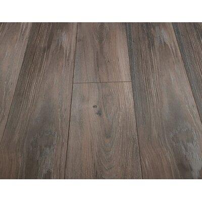 Alice Adventures 8 x 49 x 12mm Laminate Flooring in Brown