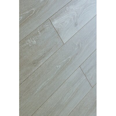 Machu Picchu 8 x 49 x 12mm Laminate Flooring in Gray (Set of 4)