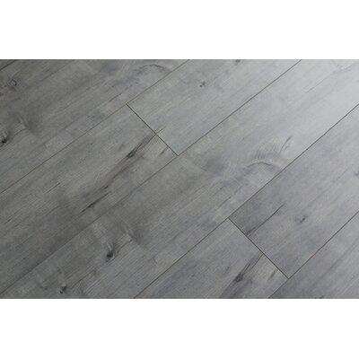 Rare Species 8 x 49 x 12mm Laminate Flooring in Gray