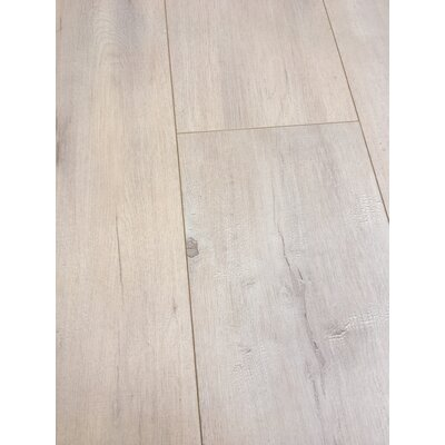 European Oak 8 x 49 x 12mm Laminate Flooring in Beige (Set of 4)