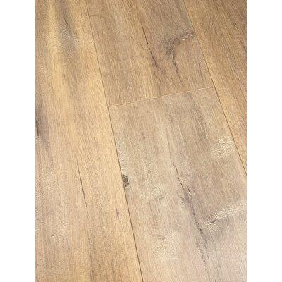 European Oak 8 x 49 x 12mm Laminate Flooring in Tan (Set of 4)