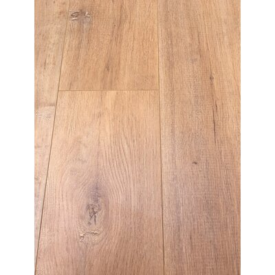 European Oak 8 x 49 x 12mm Laminate Flooring in Tan (Set of 4)
