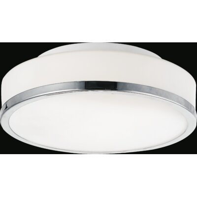Frosted 2-Light Flush Mount