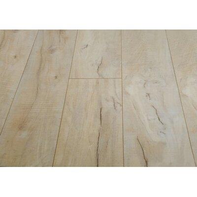 Huangshan Mountain 8 x 49 x 12mm Laminate Flooring in Brown