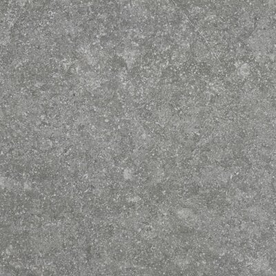 Bluenorte Gris Rectified Body 24 x 24 Porcelain Field Tile in Gray