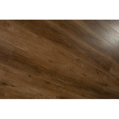 Forest Park 7 x 49 x 12mm Laminate Flooring in Brown (Set of 4)