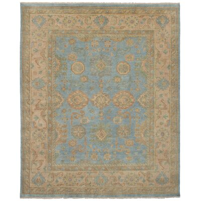 One-of-a-Kind Li Hand-Knotted Wool Sky Blue/Beige Area Rug
