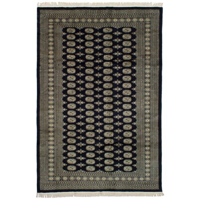 One-of-a-Kind Olney Springs Hand-Knotted Wool Dark Navy Indoor Area Rug