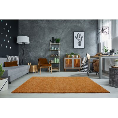 Mckinnis Shaggy Soft Plush Orange Area Rug Rug Size: Rectangle 53 x 75