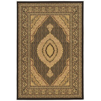 Lozoya Tabriz Black Area Rug Rug Size: Rectangle 5 x 76