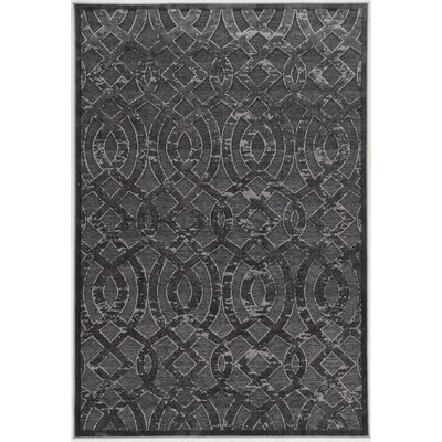 Kleinschmidt Trellis Gray Area Rug Rug Size: Rectangle 2 x 3