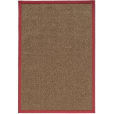 Christiano Brown Area Rug Rug Size: Runner 26 x 14