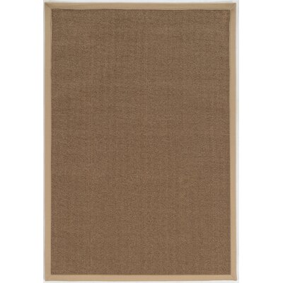 Christiano Brown Area Rug Rug Size: Rectangle 4 x 6