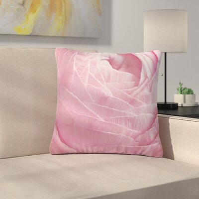 Suzanne Harford Ranunculus Flower Petals Rose Floral Outdoor Throw Pillow Size: 16 H x 16 W x 5 D