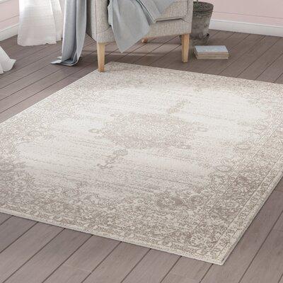 Zander Medallion Ivory/Gray Indoor Area Rug Rug Size: 53 x 73