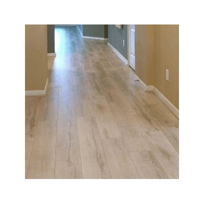 8 x 48 x 12mm Laminate Flooring in Foggy Gray