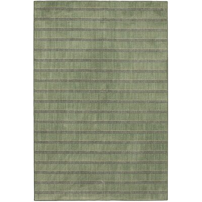 Stripe Aqua Area Rug Rug Size: Rectangle 8 x 10