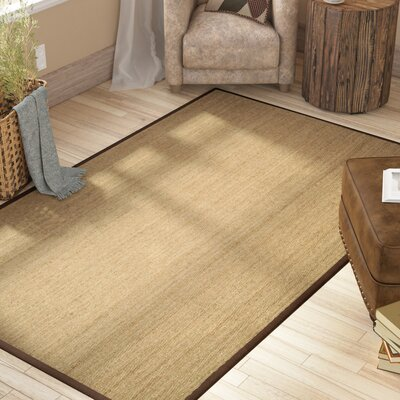 Graciela Natural Area Rug Rug Size: Rectangle 8 x 10