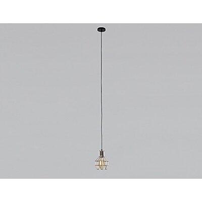 Karina Industrial Style Cage 1-Light Mini Pendant